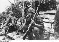 Grendiere der Waffen-SS