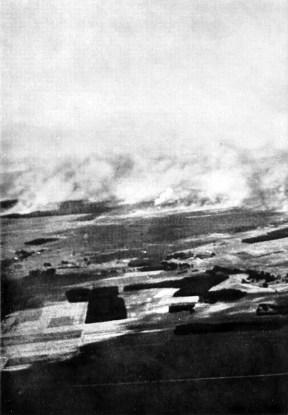 A Luftwaffe em ação