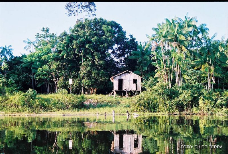 CDR examinará projeto que autoriza plantio de cana-de-açúcar na Amazônia