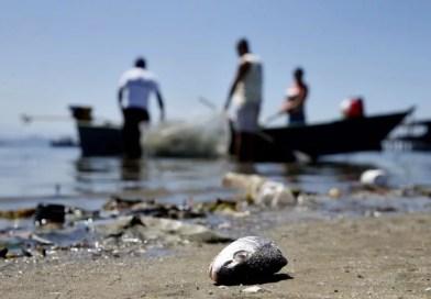 Seminário debate solução sustentável para a Baía de Guanabara