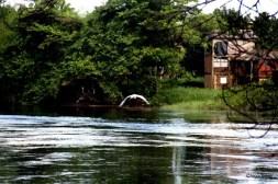 Exposição Amazônia - Chico Terra (119)