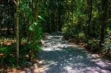 trilhas bioparque (2)