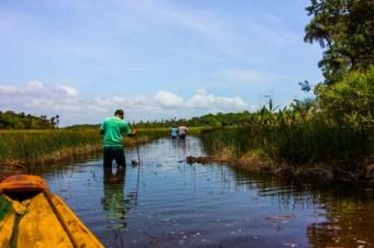 trilhas bioparque (3)