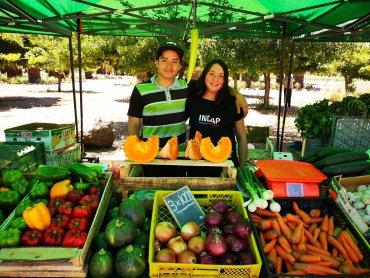 4. Locatarios Mercado