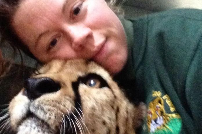 Rosa posted pictures of herself with tigers on Facebook