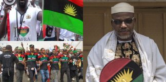 Biafra: Referendum will prove if IPOB is dead or active
