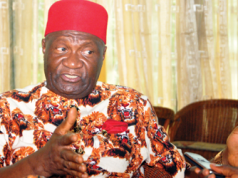 Nwodo wants to use us to negotiate vice presidential slot‎ – IPOB