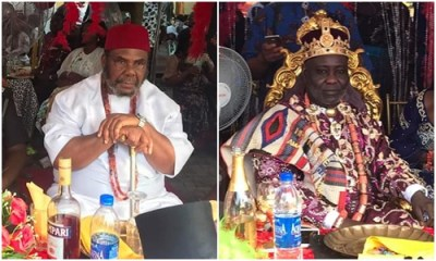 Nollywood veteran, Pete Edochie chidispalace