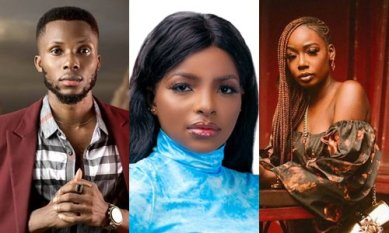BBNaija 2020: How Nigerians voted for their favourite housemates
