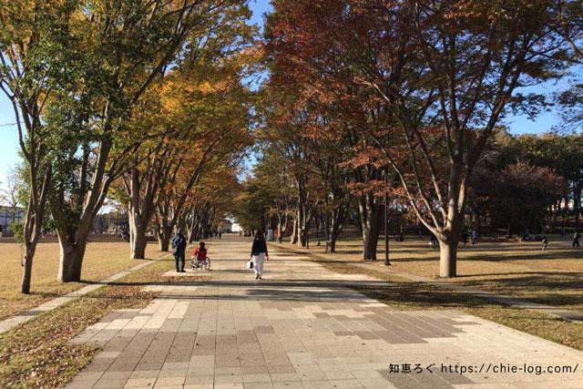南町田グランベリーパーク鶴間公園