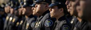 Chief Mastermind | Police Chief Training