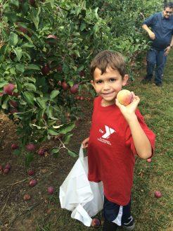 Nathan Picking Apples