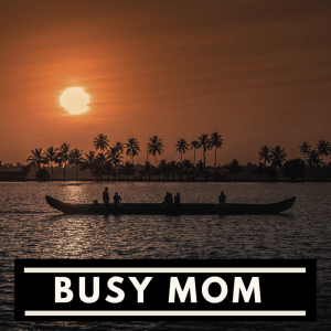 Breadwinning, Six Figure Moms - Busy Mom India