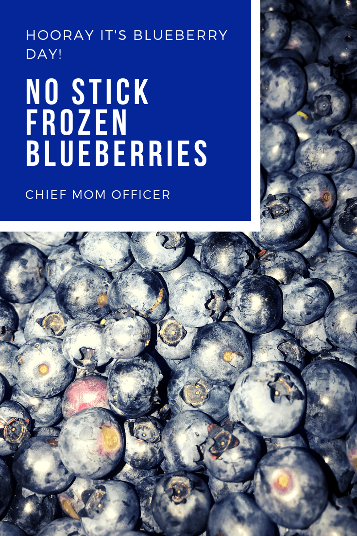 No Stick Frozen Blueberries-2