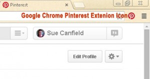 Google Chrome Pinterest Extension Icon