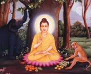 Buddha Shakamuni, god of light