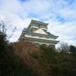 岐阜城よりも金華山よりもリス村に行ってほしい。ビバリス村