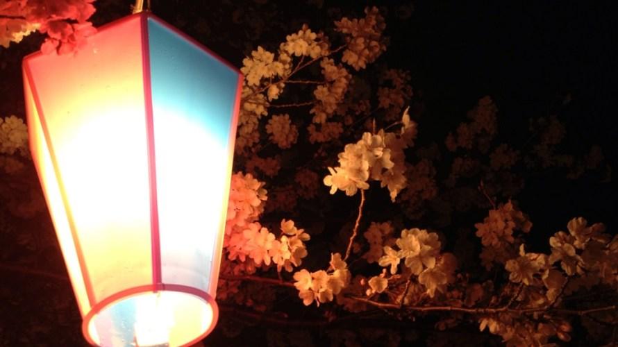 豊橋向山緑地は春まっさかり。満開の桜とお墓を楽しむスポット