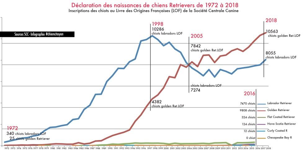 Les naissances de Retrievers en France