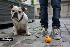 bulldog5red