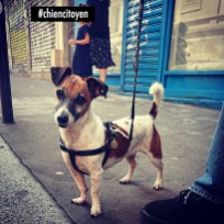MaxJackRussellParis20