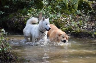 Sky et Ma'i dans l'eau