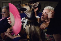 Adeline Murias and Ninpho Sweety Punk (Coated Peruvian Hairless Dog). Photo by Mauricio Alvarez.