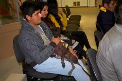 """En la foto: """"Sicán"""" - can del museo en la presentación del filme """"El Perro sin pelo del Perú"""" - Museo Nacional Sicán - Ferreñafe. By Favio Jordi Martínez Nuntón - appp/adpp ©2018"""