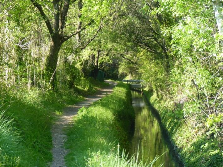 balade-le-long-du-canal