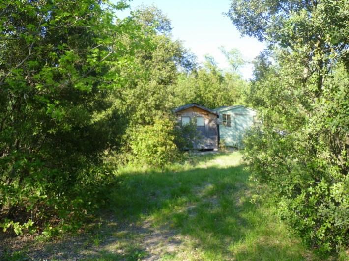 la-cabane-au-fond-du-jardin