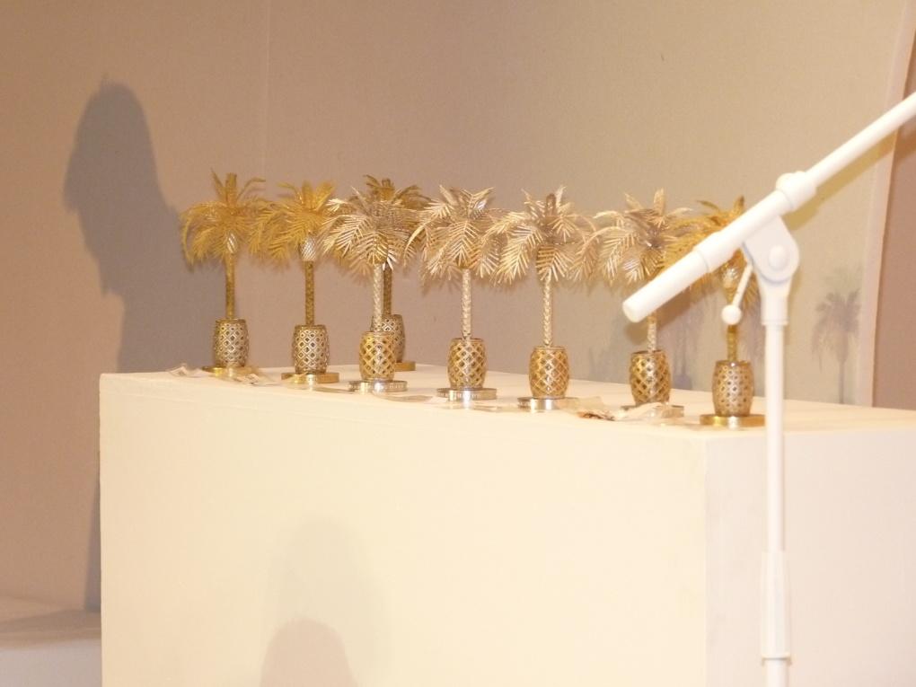 Festival international de Mode et de Photographie de Hyères : 30e anniversaire!#3
