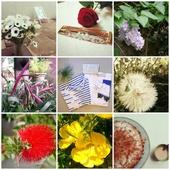 Mon joli mois de mai sur Instagram! - Chiffons and co, blog Mode, Lifestyle, Voyage