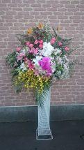 商品No520001 御祝スタンド 参考価格:21600円   御祝スタンド花です 写真は一例です。その時入荷している新鮮な花材でお届け致します、 色指定・ご希望の花材がございましたら事前にお予約・ ご連絡をお願い致します。