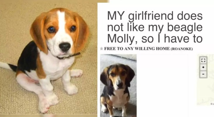 """Girlfriend Gave Her Partner A Choice, """"The Dog"""" Or """"She"""""""