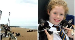 Chihuahua bites the dust 'from dread' after assault by dogs on Edinburgh beach