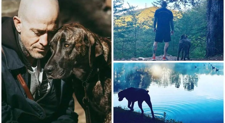 Rescue Dog Helps Navy Veteran Find Peace After Returning Home and Inspires Him to Help Others