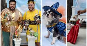 This Philly pet fashion designer is a fur dad to five Chihuahuas