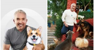 Dog Behaviorist Cesar Millan Shares His Views on the Pet Care Industry