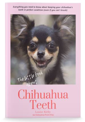 The Little Book of Chihuahua Teeth ( Etsy pdf download)