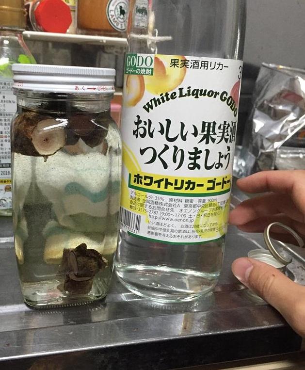 【おそるおそる】鹿の袋角酒を造りました。