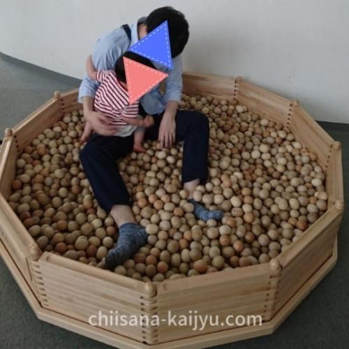 釧路市こども遊学館 ボールプール