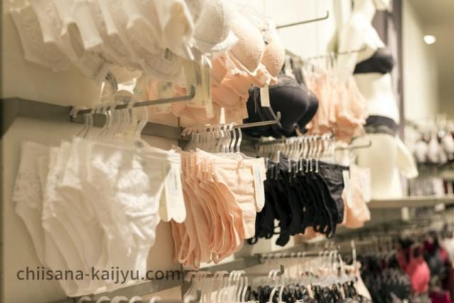 店舗で販売しているブラジャーのイメージ画像