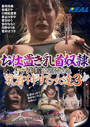 お仕置き乳首奴隷 ドマゾ乳首に開発され乳首イキする女達 3のパッケージ