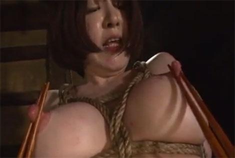 伸びた乳首を箸で摘んで箸乳首責め