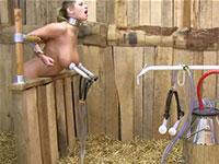 美人金髪外人さんの搾乳動画!納屋に監禁された爆乳美女が牛の乳を搾る機械を乳首に装着され乳搾り!