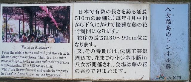 八女福島のトンネル藤 筑後福島駅跡 鉄道記念公園
