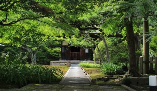 【北鎌倉】季節限定公開している長寿寺へ行ってきた【神奈川の寺院】