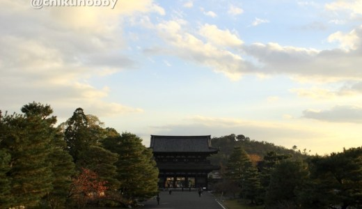 【京都の寺院】仁和寺へ行ってきた!東京で開催した仁和寺展の紹介もあるよ!