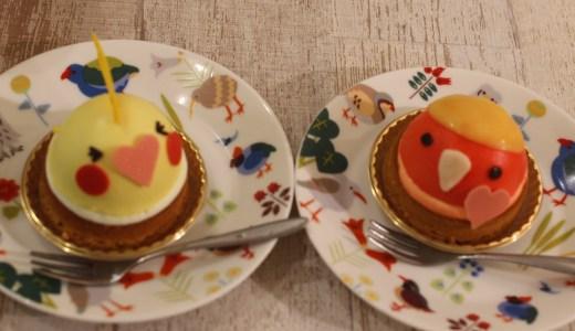 クラウドファンディングでことりカフェ表参道店の小鳥スタッフを支援させて頂きました!