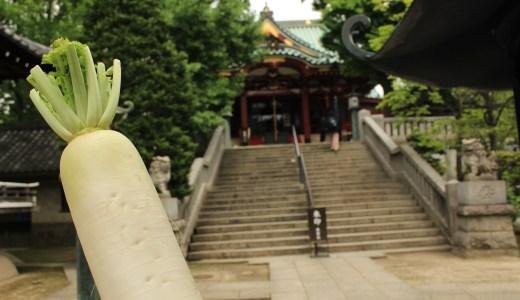 【浅草】大根がいっぱい!待乳山聖天へ行ってきた【東京の寺院】
